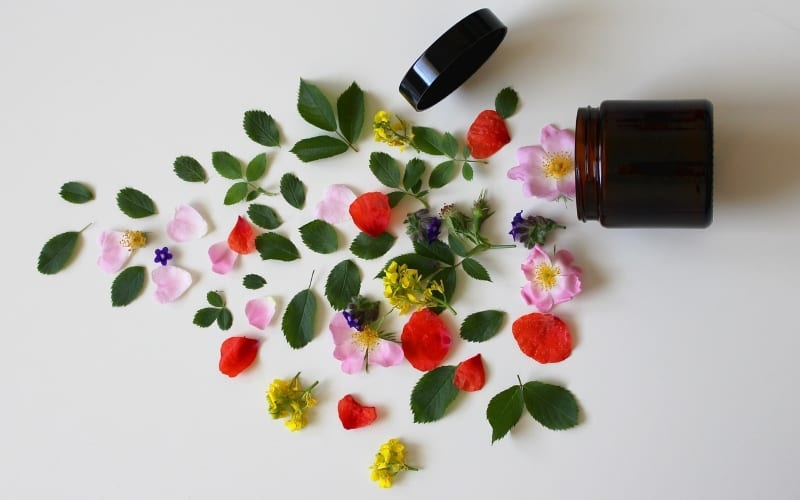 Why Women Choose Natural and Organic Beauty Products
