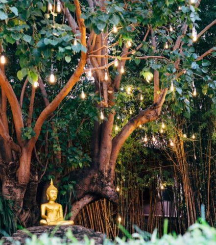 Visit Chiang Mai
