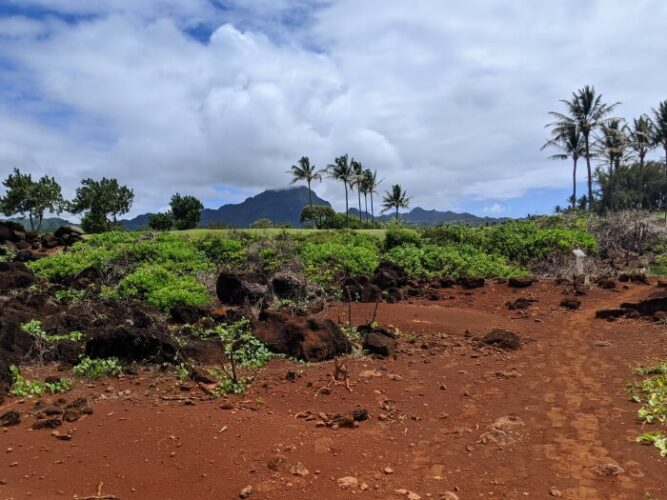 visist kauai